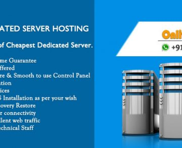 Cheapest Dedicated Server Hosting Smart Fit for Online Business Field