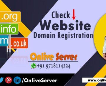 Check Website Domain Registration